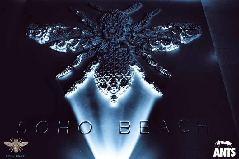 Soho-Beach-Club-Ants-Titan-International